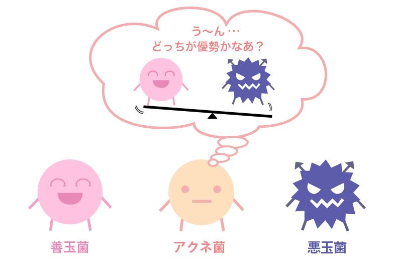 3種類の菌
