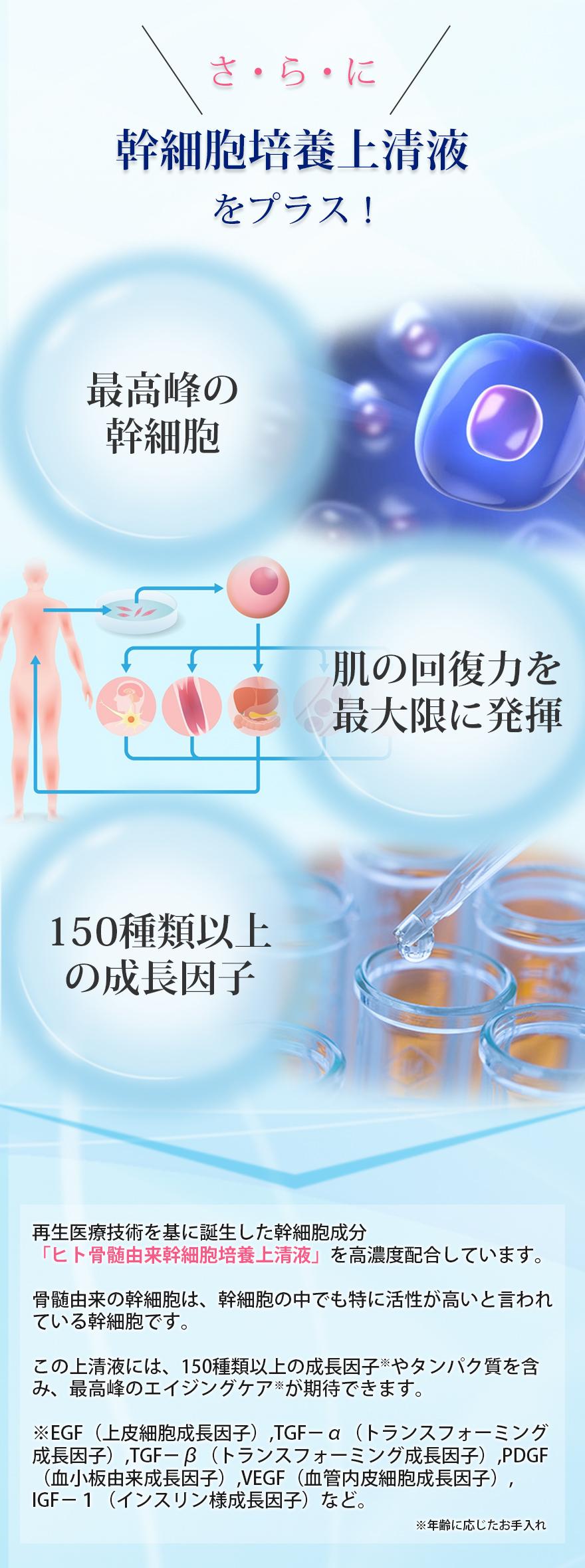 成分3:ヒト幹細胞